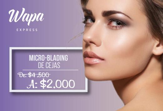 Micro-Blanding de cejas $2000