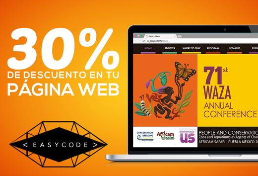 30% en tu página web
