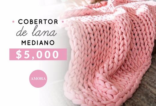 Cobertor de lana mediano $5,000