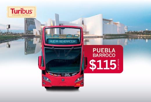 Citytour + Estrella de Puebla + Museo Barroco a sólo $115