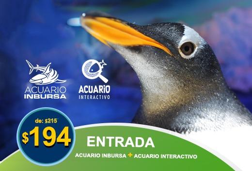 Acuario Inbursa + Acuario Interactivo $194