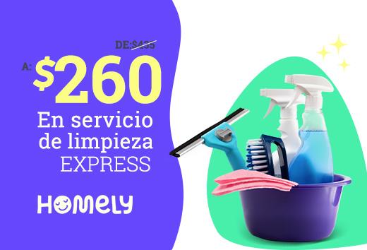 Limpieza express $260