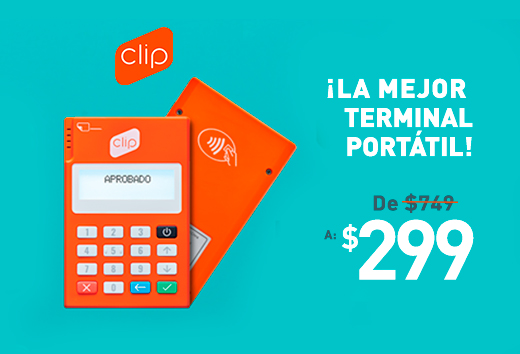 Terminal portátil $299