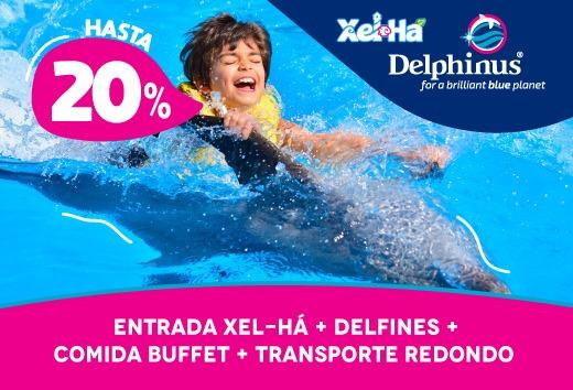 Entrada Xel-Há + Delfines + Buffet + Transporte redondo